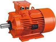 Motores asíncronos Atex Gas/Polvo